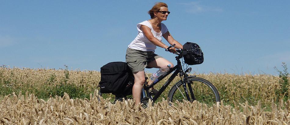 Expression cycliste: manger la luzerne