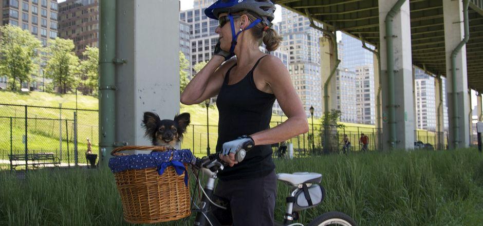 Faire du vélo avec son chien: tous les moyens sont bons!