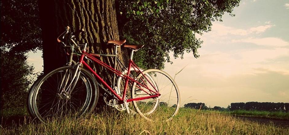Découvrir le bois de Vincennes à vélo