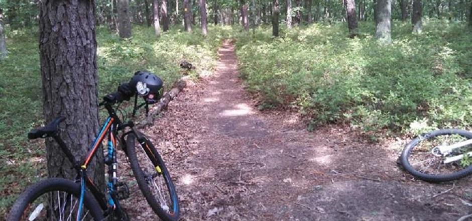 Découverte: le VTT dans les forêts de Long Island
