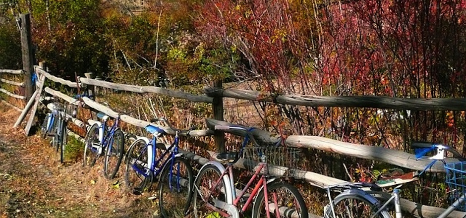 Sorties à vélo