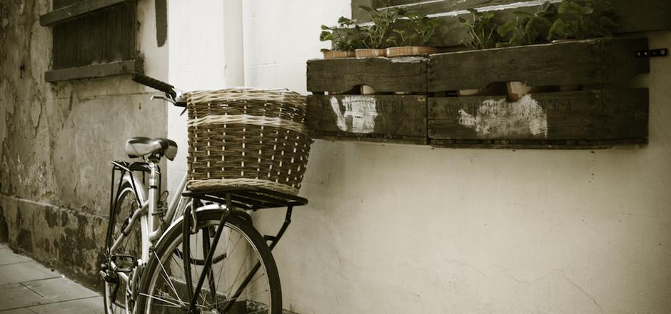 Histoire du vélo, histoire des mots...