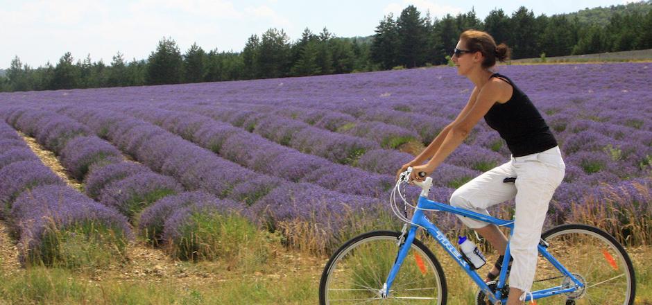 Le Lubéron à vélo: une randonnée sportive sans prise de tête