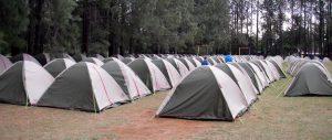 Au milieu de nulle-part, l'organisation avait prévu des centaines de tentes