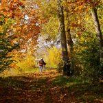 L'automne est une saison magnifique et propre aux sorties à vélo. Pour que cela reste un plaisir, veillez à bien choisir vos vêtements d'arrière-saison à vélo.