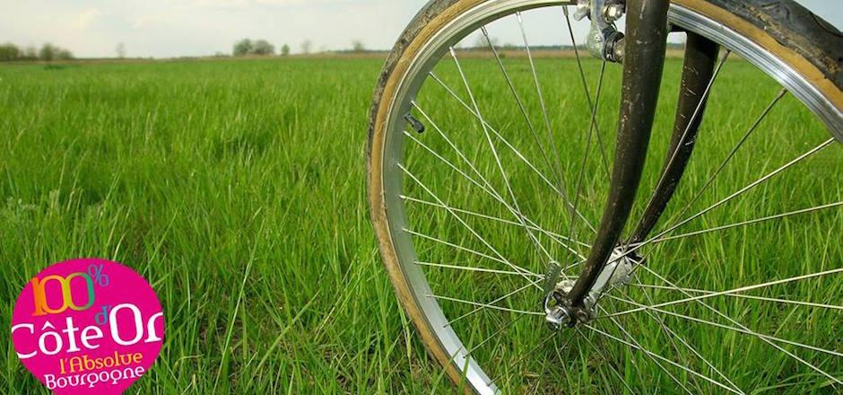 Votre Destination Vélo 2016 : la Côte d'Or!