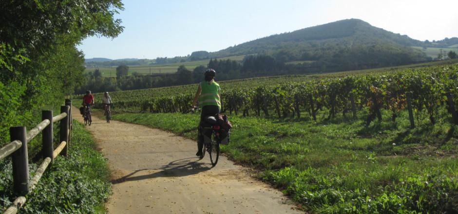 La Bourgogne à vélo vous comblera de ses richesses culturelles et gastronomiques, comme de la beauté de ses paysages naturels et ancestraux.