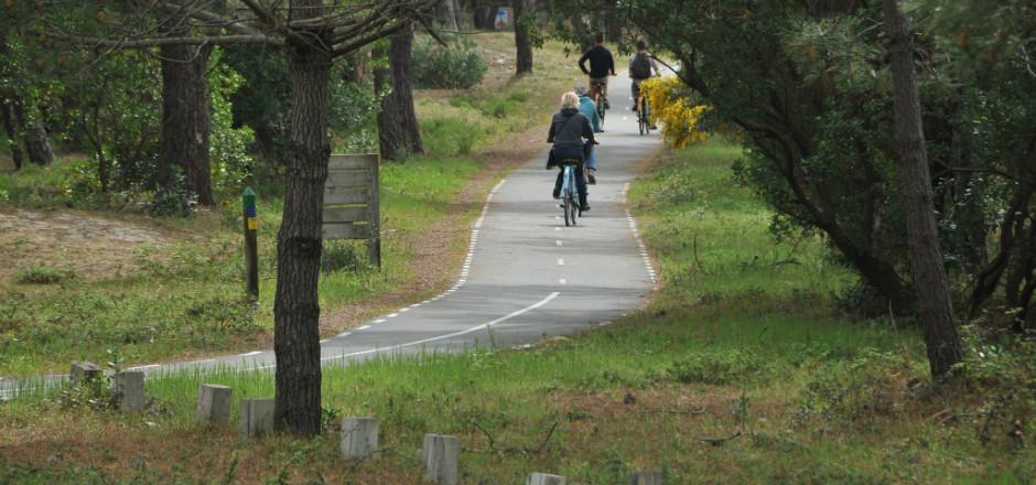 La Vélodyssée vous invite à un voyage à vélo le long de l'Atlantique. Entre plage, nature, gastronomie et ville... Faites votre choix!