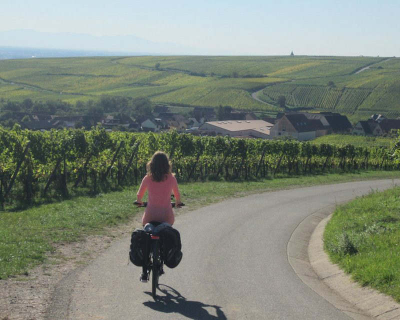 La route des vins à vélo vous invitent aux découvertes.