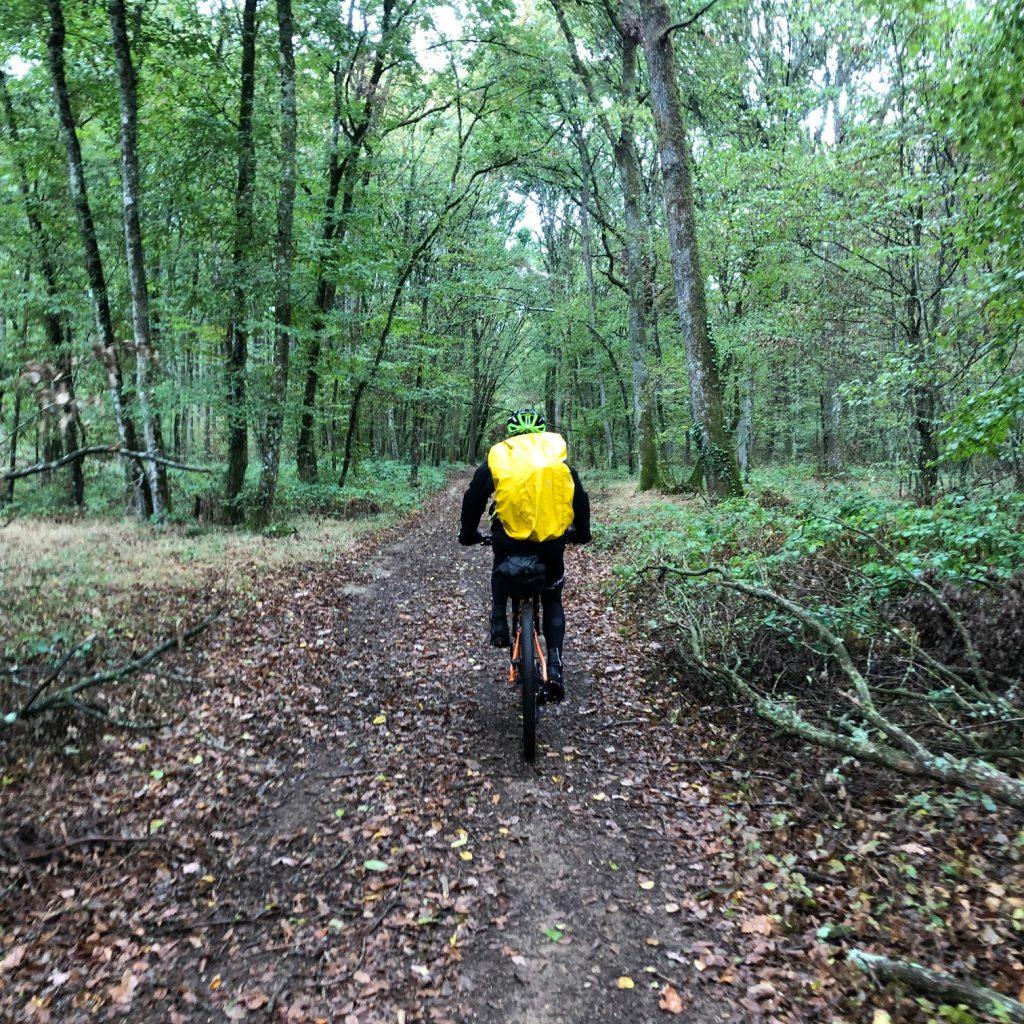 Itinerance vtt dans les bois sur la GTMC
