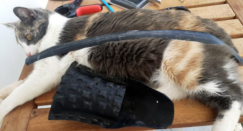 Ficeler le chat pour travailler tranquillement
